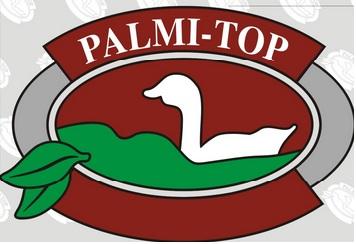 palmitop